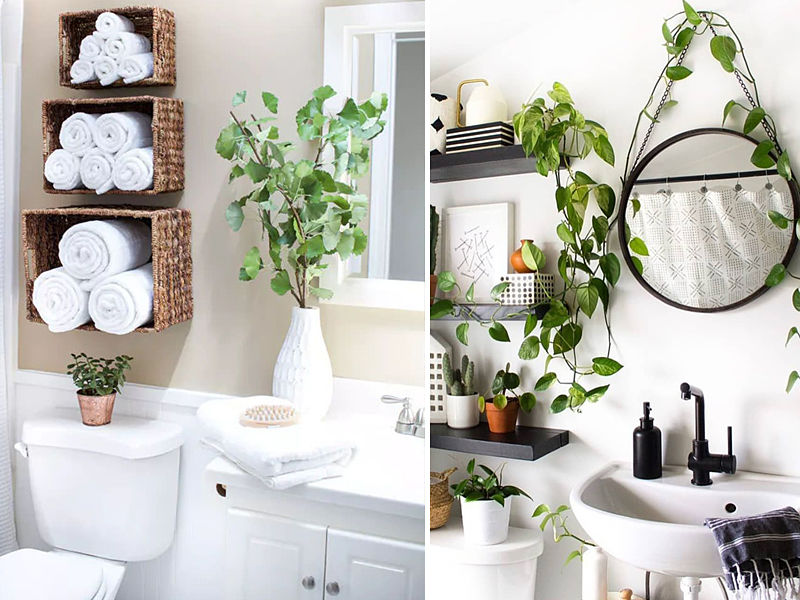 plantas no banheiros