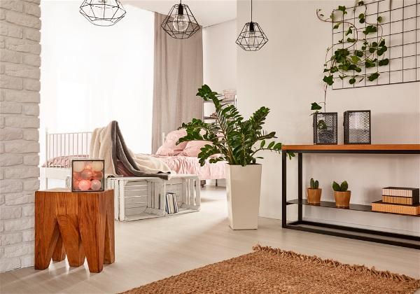 ambiente com decoração moderna e iluminação natural